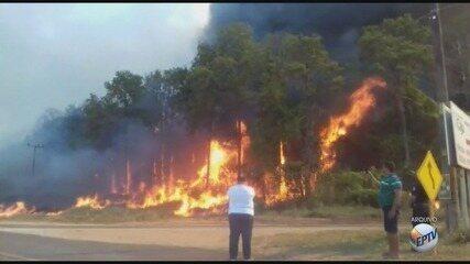 Incêndio atinge reserva florestal em Mogi Guaçu