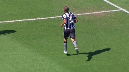 Veja os 17 gols do artilheiro Roger, atacante do Botafogo, em 2017