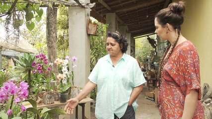 No Orquidário de Morro do Chapéu, empresária dá dicas de cultivo da flor