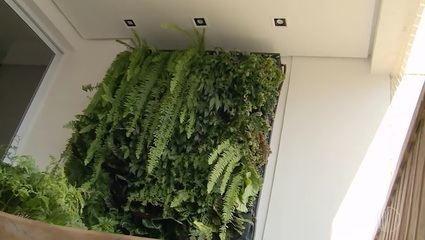 Ideias de jardins verticais para você ter em casa