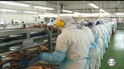 Comitê europeu decide barrar 20 frigoríficos brasileiros