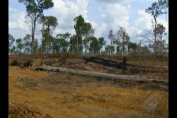Encontro em Belém discute a preservação da Amazônia