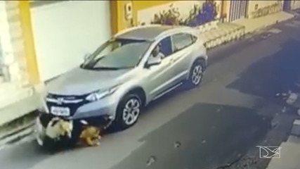 Enfermeira atropela cachorros em São Luís; vídeo repercute nas redes sociais
