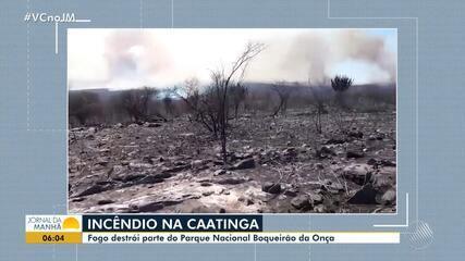 Incêndio destrói parte do Parque Nacional Boqueirão da Onça, em Sento Sé