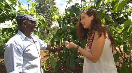 Na cidade de Taperoá, a maior produtora de guaraná do Brasil, Briza faz turismo rural