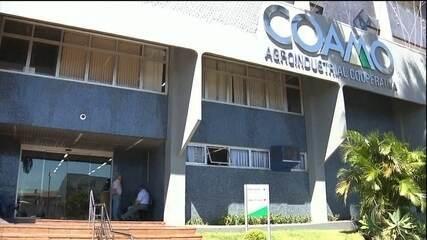 Cooperativas do Paraná começam a pagar a sobra aos agricultores