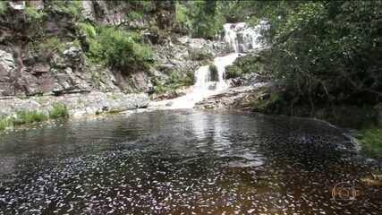 Bombeiros recomeçam buscas por duas pessoas que desapareceram em cachoeira, em MG