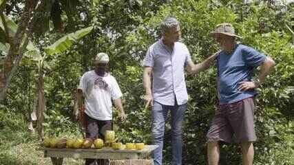 Otaviano Costa visita fazenda de cacau e acompanha produção de chocolate
