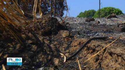Corpo de Bombeiros já registrou 471 focos de incêndio em vegetação na Região dos Lagos
