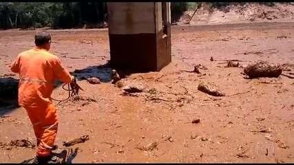 Boletim: funcionário da Vale conta como conseguiu salvar uma mulher da lama