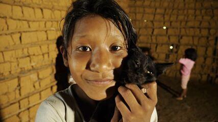 Conheça a aldeia indígena de Guaraqueçaba com o 'Plug'