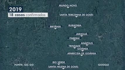 Meningite já matou seis pessoas este ano, em Goiás
