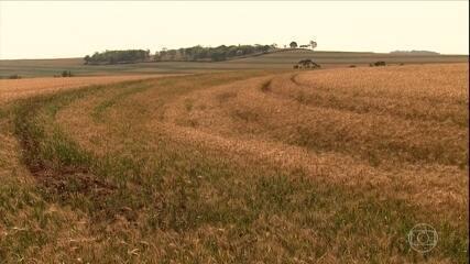 Manejo correto da terra evita contaminação de rios por agrotóxicos