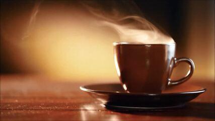 Produção de café gera R$ 20 bilhões por ano