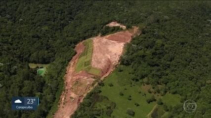 Empresário vira réu por desmatamento