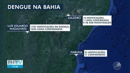 Notificações de dengue têm crescimento em várias partes da Bahia, em dois meses