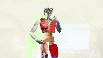 Viva Você: músculos