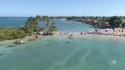 Avança: 'entrada do recôncavo' aquece a economia baiana com agricultura e turismo