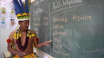 Estudantes indígenas de universidade de Mato Grosso aprendem a dar aulas em suas aldeias