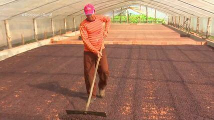 Produtores de café apostam em maquinário que faz a lavagem dos grãos
