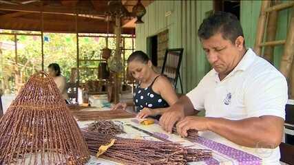 Falta de acordo sobre Fundo Amazônia pode extinguir projetos ambientais