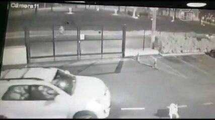 Cachorra morre atropelada por veículo em estacionamento de shopping