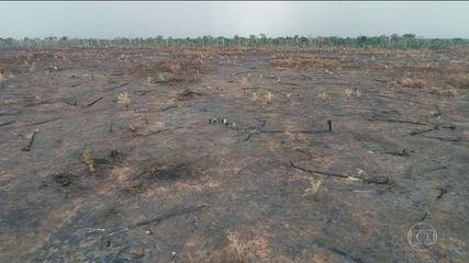 Em Mato Grosso, força-tarefa localiza novos desmatamentos e queimadas