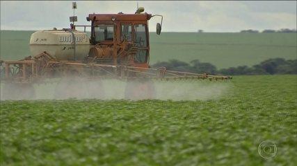 Governo autoriza mais de 60 agrotóxicos; total de registros em 2019 chega a 325
