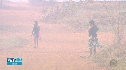 Fogo na região da Fazenda da Barra destrói plantações em Ribeirão Preto, SP