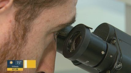 Pesquisadores de São Carlos e Ribeirão descobrem doença causada por parasita desconhecido
