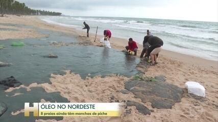 Oito praias do litoral do Nordeste ainda têm manchas de óleo