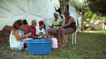 Em assentamento Paulo Cunha, agricultoras se unem e criam o projeto Mulheres Arretadas