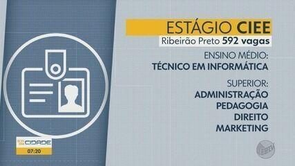 CIEE oferece 1,1 mil vagas de estágio em Ribeirão Preto e Franca