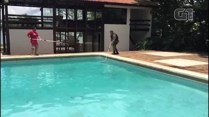 Capivaras são resgatadas em piscina no DF