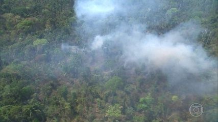 Jair Bolsonaro anuncia a criação do Conselho da Amazônia