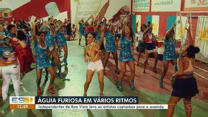 Carnaval 2020: Boa Vista leva os artistas capixabas para a avenida