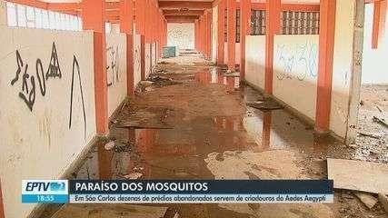 São Carlos tem 85 imóveis abandonados denunciados para ouvidoria da prefeitura