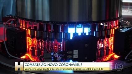 Cientistas brasileiros trabalham na pesquisa de um medicamento contra o novo coronavírus