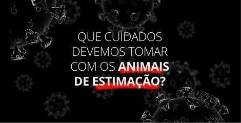 Coronavírus: que cuidados devemos tomar com os animais de estimação?