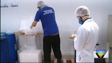 Fábrica de álcool em gel aumenta produção e contrata funcionários para atender demanda
