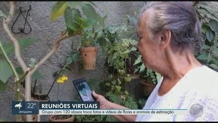 Grupo com 120 idosos troca fotos e vídeos de flores e animais de estimação