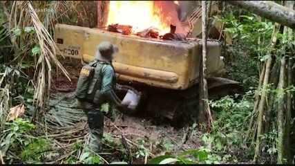 Áudios e vídeos revelam detalhes de esquema de grilagem dentro de terras indígenas