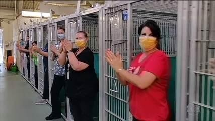 Pela primeira vez na história, abrigos de animais ficam vazios nos Estados Unidos