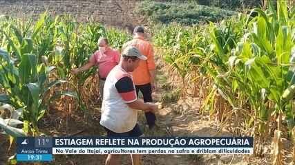 Estiagem afeta agricultura em cidades do Vale do Itajaí