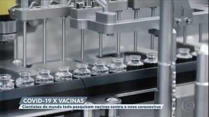 Cientistas do mundo todo pesquisam vacinas contra o coronavírus