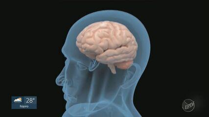 Pesquisa da Unicamp ajuda a compreender de que forma a Covid-19 influencia no corpo humano
