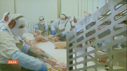 Funcionários de frigorífico em SC passam por testagem para identificar Covid-19