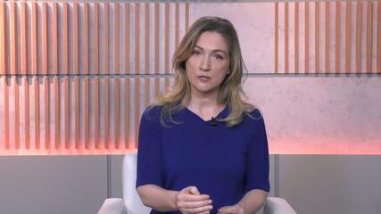 Ana Flor comenta sobre medida provisória que cria linha de crédito emergencial