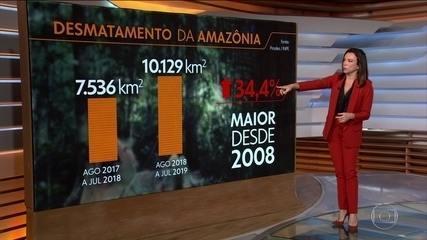 Desmatamento aumentou 34% na Amazônia em 2019