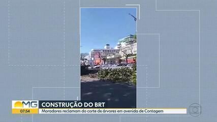 Moradores de Contagem estão preocupados com cortes de árvores